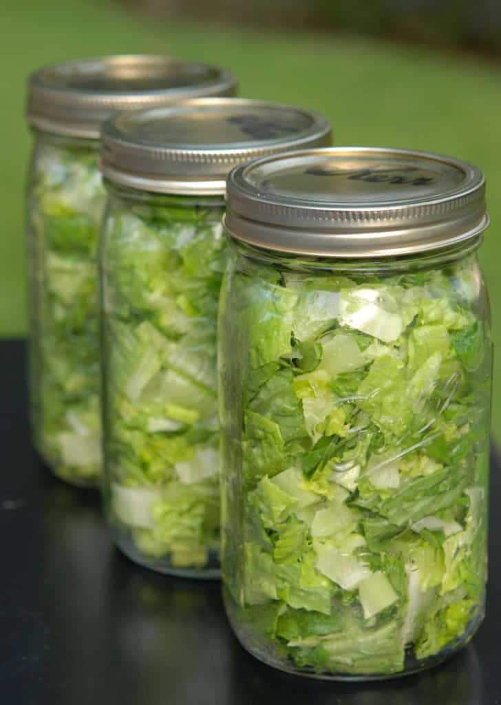 Vacuum-packed jars of Romaine lettuce