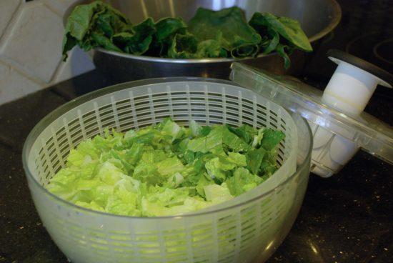 new salad spinner