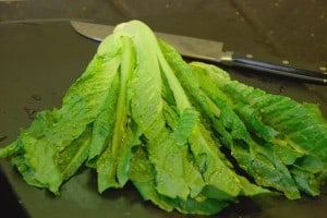 slicing lettuce-1