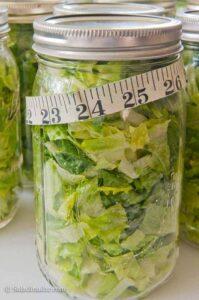 Vacuum-pack Lettuce to Prolong Freshness