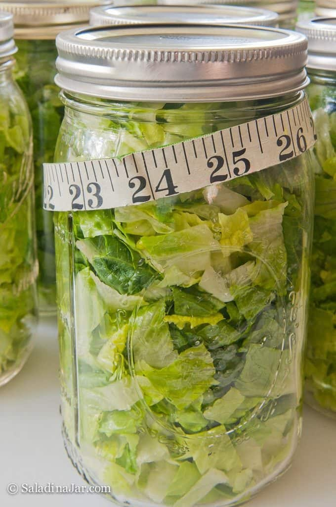 Vacuum-pack Lettuce to Prolong Freshness-- Jars of vacuum-packed lettuce with a tape measure around them.