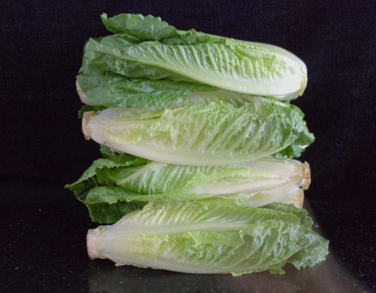 Fresh Romaine lettuce stacked on the counter