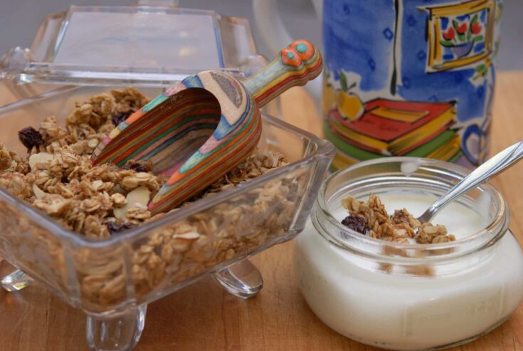 Low-Calorie Homemade Granola