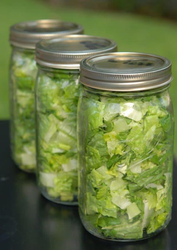 3 vacuum-sealed jars of chopped lettuce