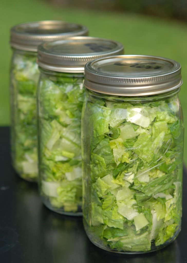 3 vacuum-sealed jars of chopped lettuce