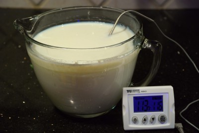 thermometerinyogurt