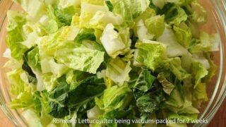 Why the Lettuce Experiment Will Make Your Life Easier
