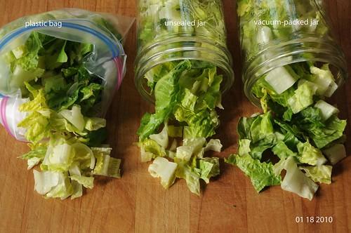 comparing fresh cut romaine lettuce