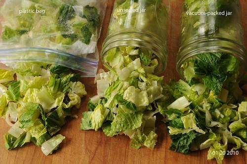 comparing lettuce after storing for 4 days