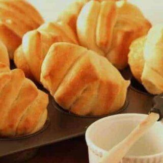 Yogurt Fantans (made in a bread machine)