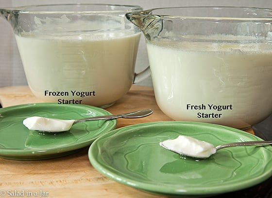 COMPARISON OF FROZEN STARTER TO REGULAR STARTER