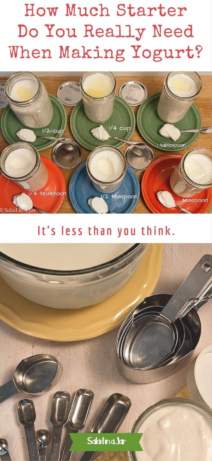 How Much Starter Do You Really Need To Make Yogurt; experiment, homemade yogurt, starter, troubleshoot, comparison, tips