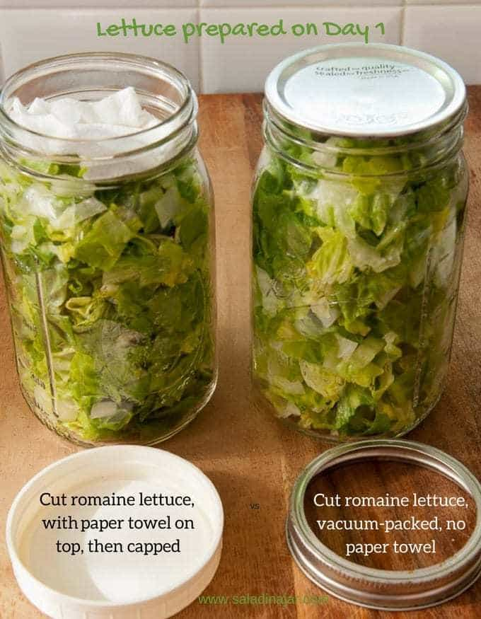 Vacuum-packed lettuce compared to jar containing paper towel