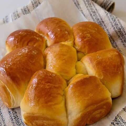 My Favorite Dinner Rolls--Updated