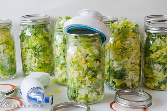Vacuum-packing jars of lettuce with equipment needed to vacuum-pack it.