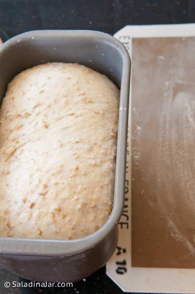 dough in bread machine