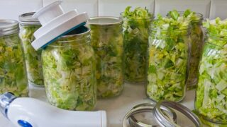 12 FAQ About Vacuum-Packing Chopped Lettuce That Stays Fresh Longer
