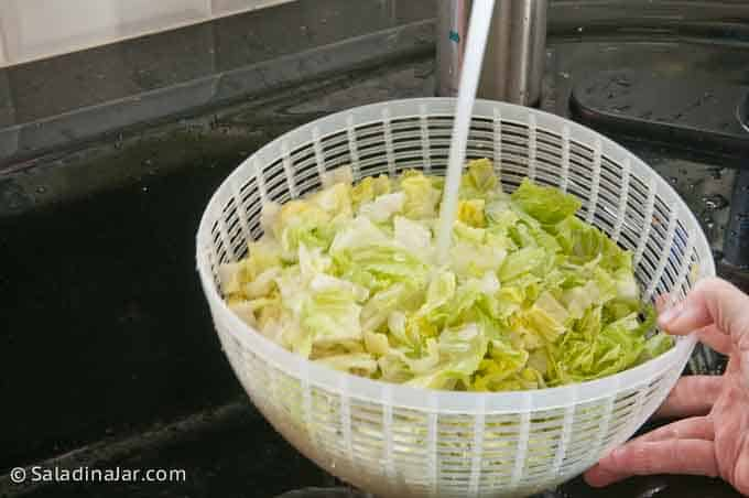 rinsing lettuce at the sink in a salad spinner basket