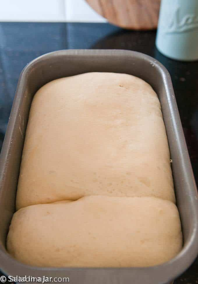 rescued bread dough