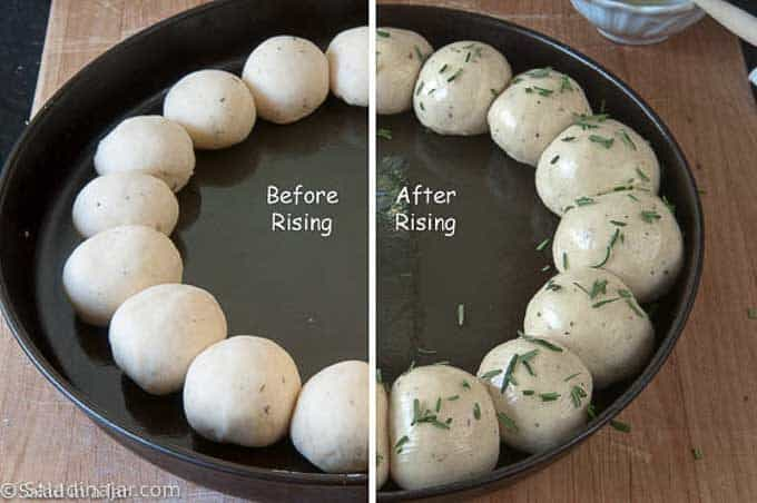 ring of dough balls before and after rising