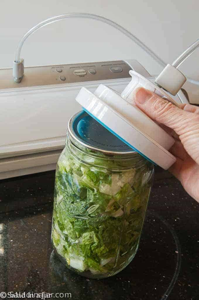 mason jar of lettuce with a wide-mouth adapter used to vacuum pack