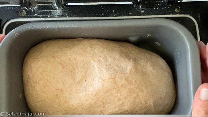 after the dough has doubled in size