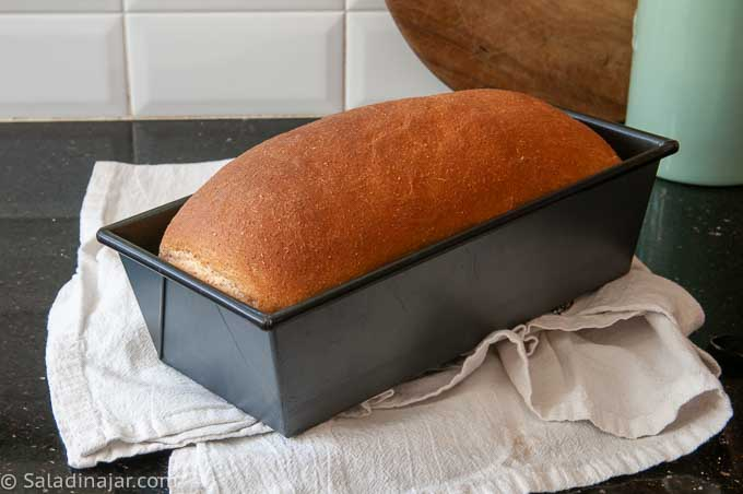 uncut loaf of  whole wheat bread