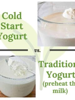 cold start yogurt vs. traditional homemade yogurt