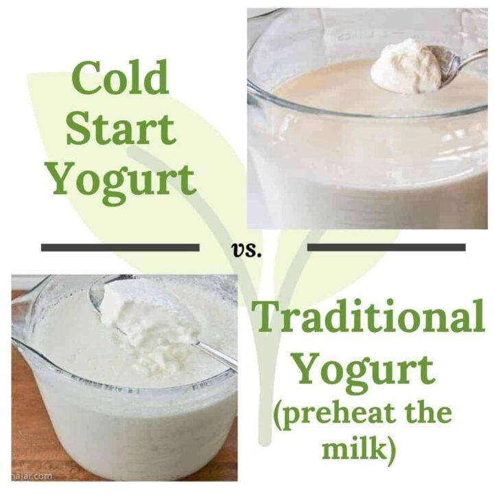 cold start yogurt vs. traditional homemade yogurt