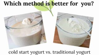 Which is Better? Cold Start Yogurt or Making Yogurt the Traditional Way?