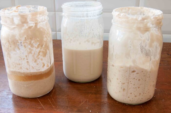three stages of sourdough starter