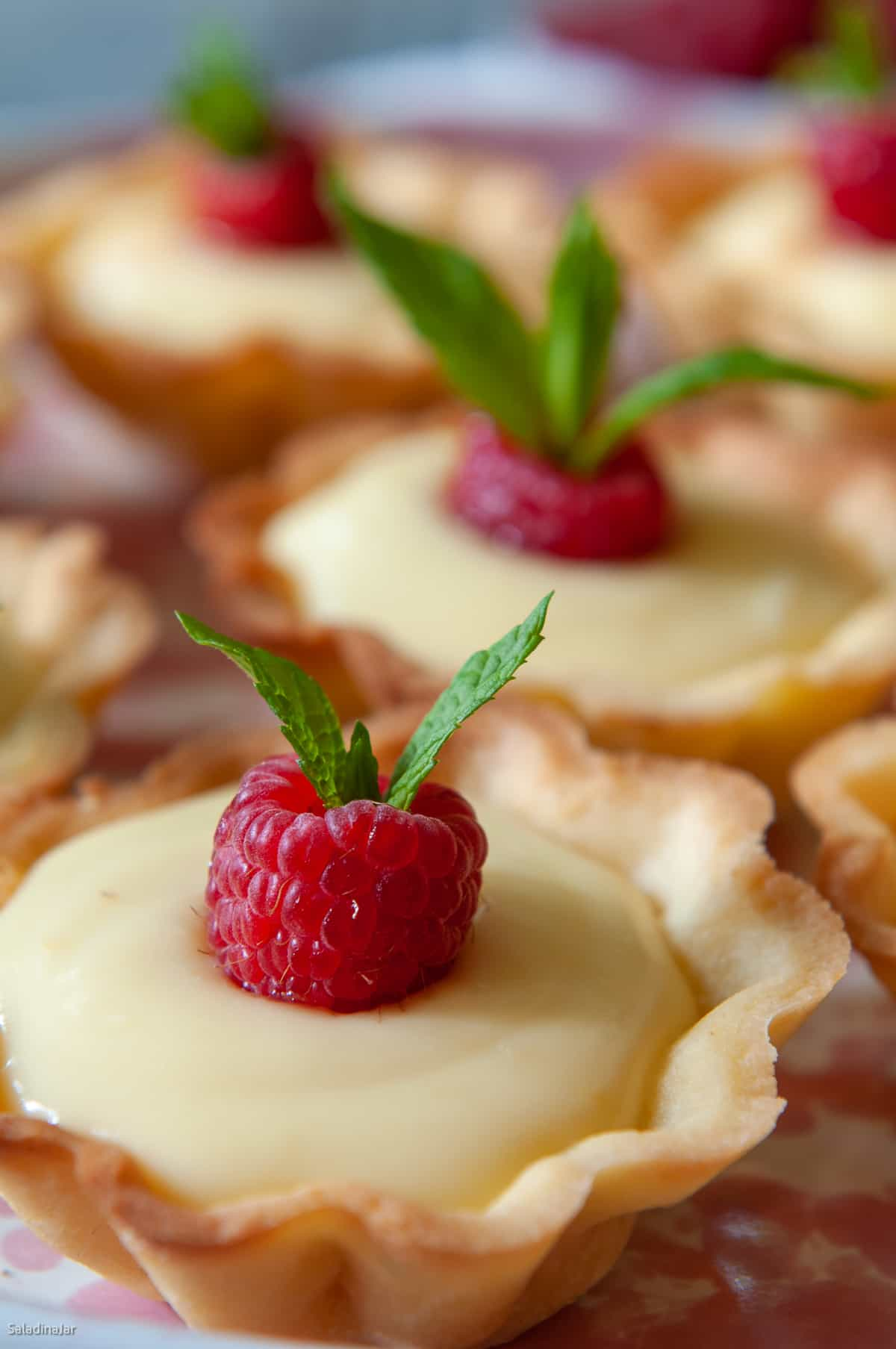 closeup of lemon tartlette