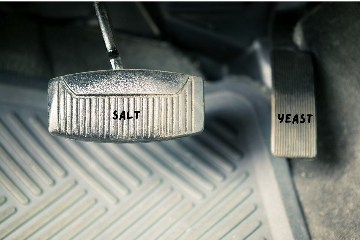 gas pedal and brakes in a car to illustrate relationship of yeast and salt in bread